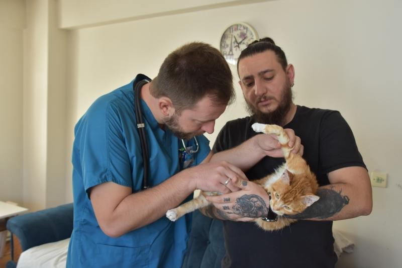 Demir Korkuluklara Saplanan Kedi Kurtarıldı