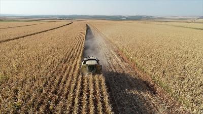 TMO'dan çiftçiye 'alım fiyatı' müjdesi